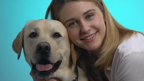 Pretty young woman and labrador dog looking camera closeup on blue background. Stock footage stock video