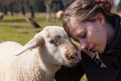 Pretty young woman leaning head on sweet lamb Royalty Free Stock Photography