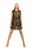 Pretty young woman in leopard vest isolated on the Royalty Free Stock Photos
