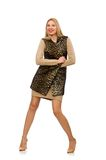 Pretty young woman in leopard vest isolated on the Royalty Free Stock Images