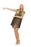 Pretty young woman in leopard vest isolated on Royalty Free Stock Images