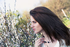 Pretty young woman near tree with flowers Royalty Free Stock Photos