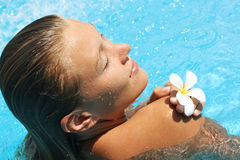 Pretty young woman in pool Stock Image