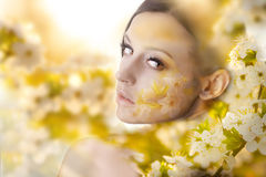 Pretty young woman portrait with white flowers Royalty Free Stock Photography