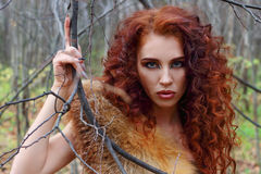 Pretty young woman poses among tree branches Stock Photos