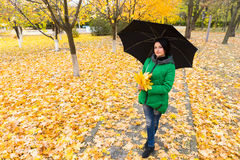 Pretty young woman posing in an autumn park Stock Photography
