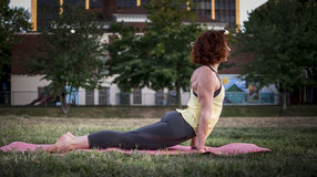 Pretty Young Woman Practicing Yoga in the Park (Up Dog) Stock Image