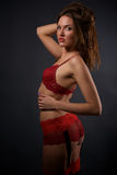 Pretty young woman in red lingerie and stockings Royalty Free Stock Photography