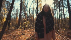 Pretty young woman is resting in park in autumn, walking on ground in sunny day. Brunette woman is admiring nature of fall forest in sunny day. She is going over stock video