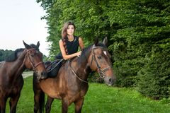 Pretty young woman riding a brown horse Royalty Free Stock Images