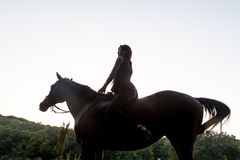 Pretty young woman riding a brown horse Stock Photo