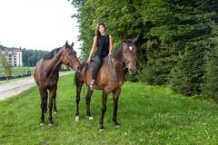 Pretty young woman riding a brown horse Royalty Free Stock Image