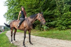 Pretty young woman riding a brown horse Stock Images