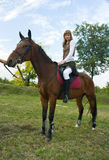 Pretty young woman riding  horse. Royalty Free Stock Photography