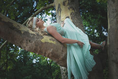 Pretty young woman in romantic dress lie  on tree summer day Stock Images