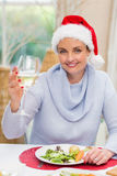 Pretty young woman in santa hat toasting with white wine Stock Photos