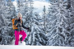 Pretty, young woman snowshoeing in high mountains. Enjoying splendid winter weather with abundance of snow stock image