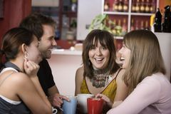 Pretty Young Woman Surrounded by Friends stock images