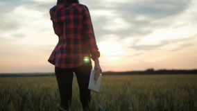 Pretty young woman with tablet computer working in wheat field at sunset. The girl uses a tablet, plans to harvest. Tapping the tablet screen. The concept of stock footage