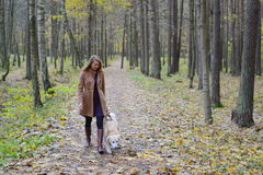 Pretty young woman walking with her dog. Pretty young woman in autumn park walking with her dog Stock Photo