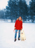 Pretty young woman with white Samoyed dog together on snow in winter day, walking at park forest Stock Image