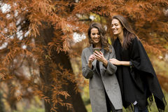 Pretty young women in autumn park Stock Photo