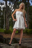 Pretty Young Women in White Dress Royalty Free Stock Photos