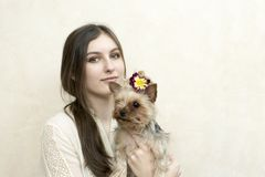 Girl sitting and holding a yorkshire terrier stock photo