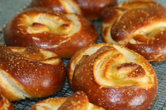 Pretzel. Home made delicious hot from the oven pretzels stock image
