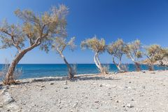 Preveli Beach 3 Stock Photography