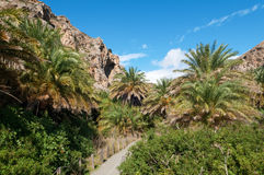 Preveli Palm Beach Stock Photo