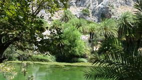 Preveli Rethymno Royalty Free Stock Images