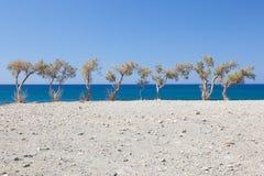 Preveli strand 1 Royaltyfria Bilder
