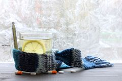 Prevention of colds in winter. Drink with lemon in the transparent mug, wrapped in a scarf with a thermometer on the background of pills and frozen windows Stock Photos