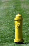 Prevention: yellow fire hydrant Royalty Free Stock Photo