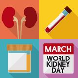 Preventive Test that Prove Renal Health in World Kidney Day, Vector Illustration. Poster in flat style for World Kidney Day with basic tests that prove good Stock Photography