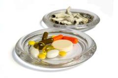 Preventivpillerar och stumpar Royaltyfri Bild
