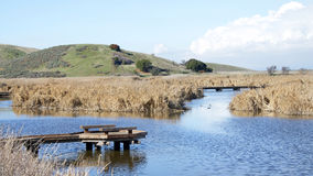 Previously dried up lake bed with pier jetty out in Coyote Hills Royalty Free Stock Images