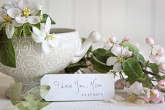 Prezent karta z okwitnięciem kwitnie w wazie Fotografia Royalty Free