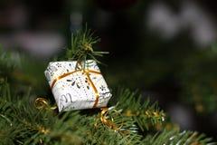 Prezent na drzewie Zdjęcia Royalty Free
