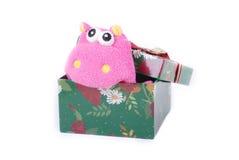 prezent pudełkowata śliczna zieleń zdjęcia royalty free