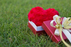 prezent pudełkowata miłość Zdjęcie Stock