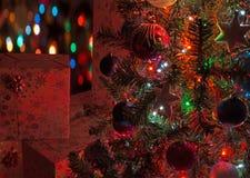 prezent w tree Obraz Stock