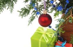 prezent w tree Fotografia Stock