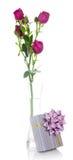 Prezenta pudełko z pięknym łękiem i róża rozgałęziamy się Zdjęcie Stock