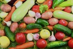 Prezenty owoc, warzywa i sałatka natura - różnorodność, Obraz Stock
