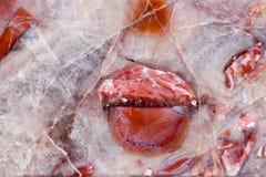 Prezioso minerale di colore della pietra preziosa del gioiello variopinto di cristallo rosso della gemma Immagine Stock