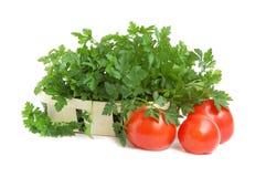 Prezzemolo e pomodori Fotografia Stock