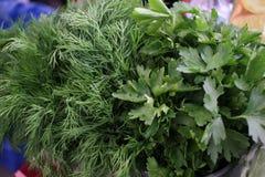 Prezzemolo ed aneto Erbe fresche, organiche, del giardino, dell'aneto e del prezzemolo Vitamine verdi detox Erbe aromatiche per i fotografia stock