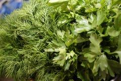 Prezzemolo ed aneto Erbe fresche, organiche, del giardino, dell'aneto e del prezzemolo Vitamine verdi detox Erbe aromatiche per i immagini stock